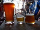 Požaha 2009 - za nejlepším pivem na této planetě